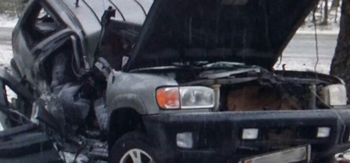 В Любанском районе Nissan врезался в дерево – двое погибших