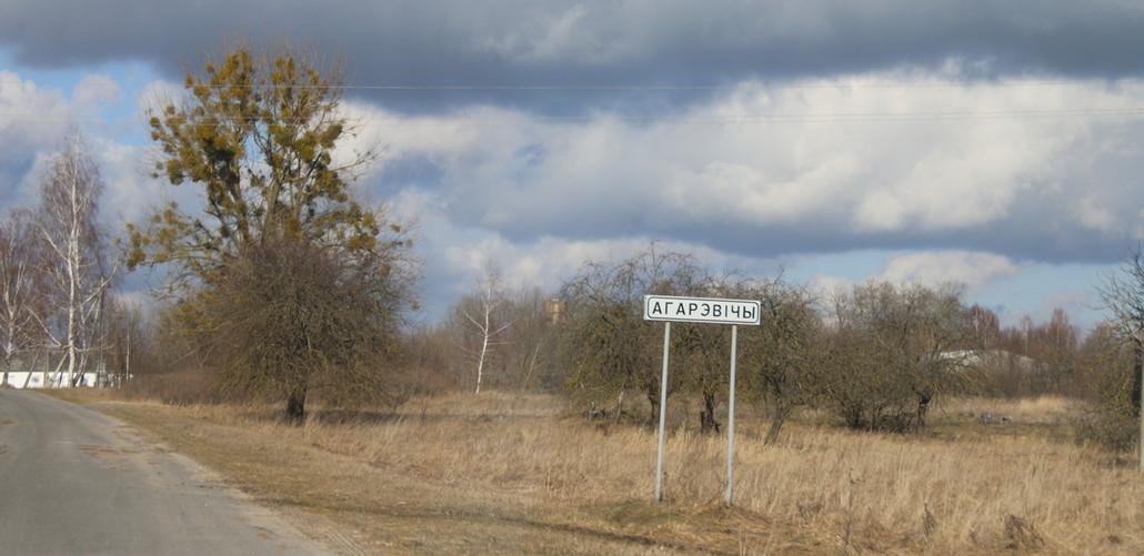 Под Ганцевичами обнаружили труп 36-летнего минчанина. Его убили