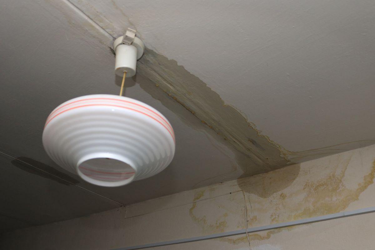 Мокрый потолок на площадке 9 этажа. Фото: Александр ЧЕРНЫЙ