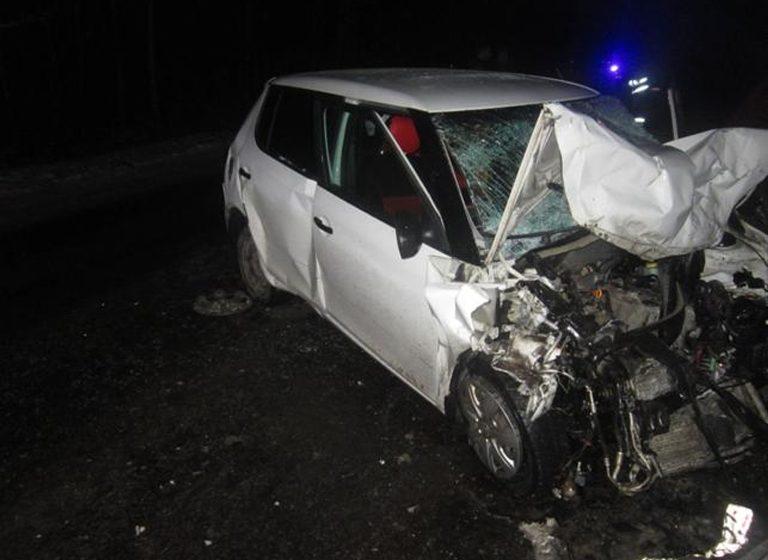 В Вилейском районе из-за выбежавшего на дорогу животного столкнулись два автомобиля, один из водителей погиб