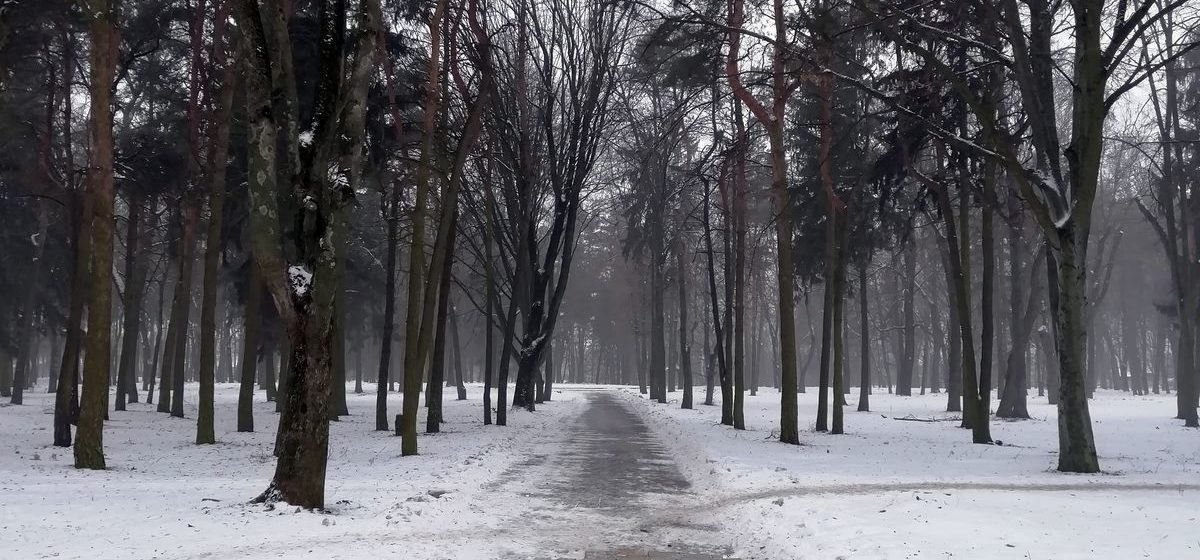 Метеорологи рассказали, какая погода будет в Барановичах в последний день января