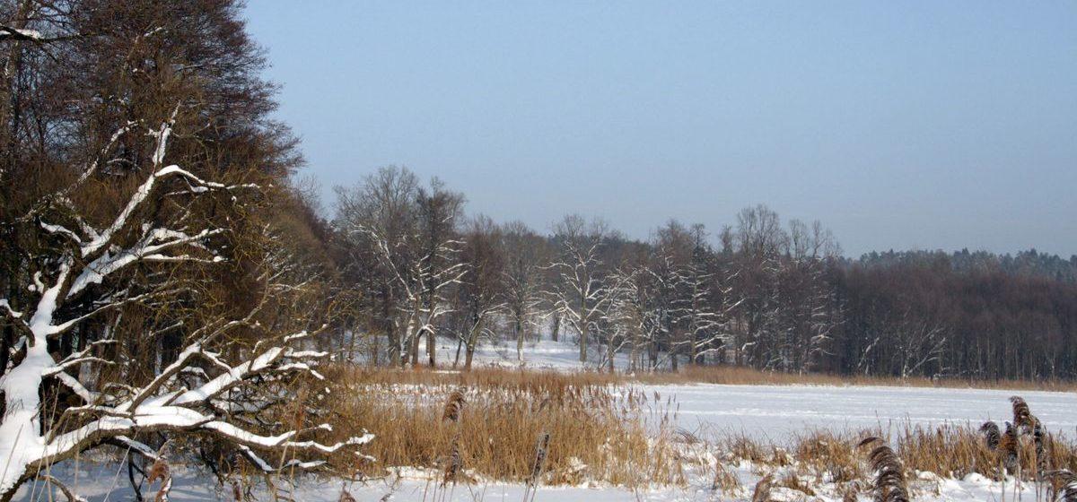 Ночью -21, днем -15°С. Метеорологи рассказали о погоде в Беларуси 10 января