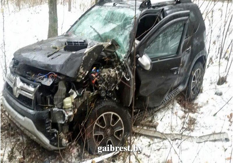 Житель Барановичей на Рено-Дастер врезался в дерево в Каменецком районе