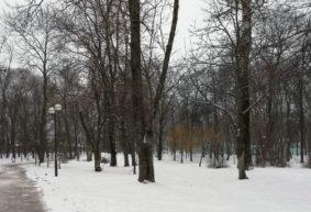 Где можно покататься на лыжах и коньках в Барановичах