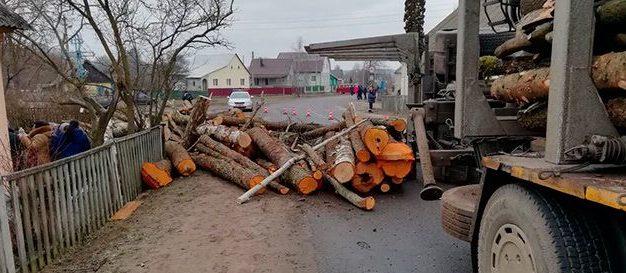 Трагедия в Ружанах: бревна выпали из грузовика и придавили 6-месячного ребенка и его бабушку