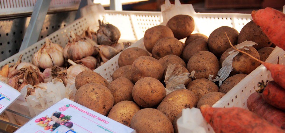 Беларусь существенно нарастила поставки продовольствия в Европу