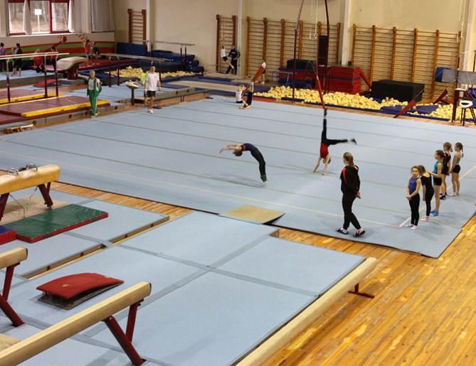 Юные барановичские гимнасты привезли медали республиканской Спартакиады