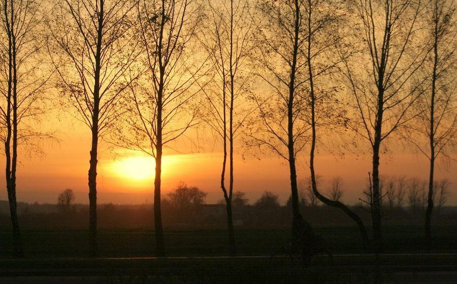 Погода в Барановичах: в выходные будет тепло и ветрено