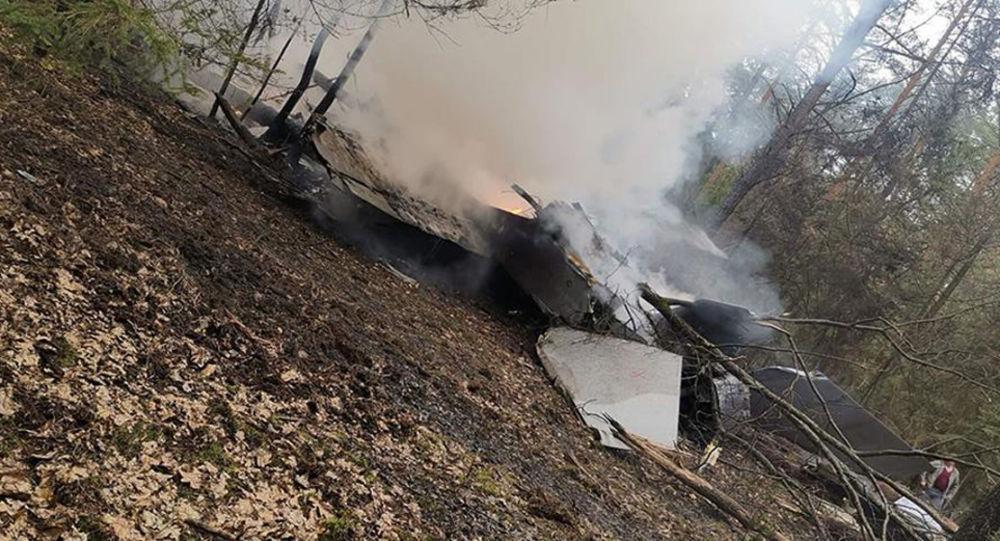 Истребитель МиГ-29 Военно-воздушных сил Польши разбился в лесу