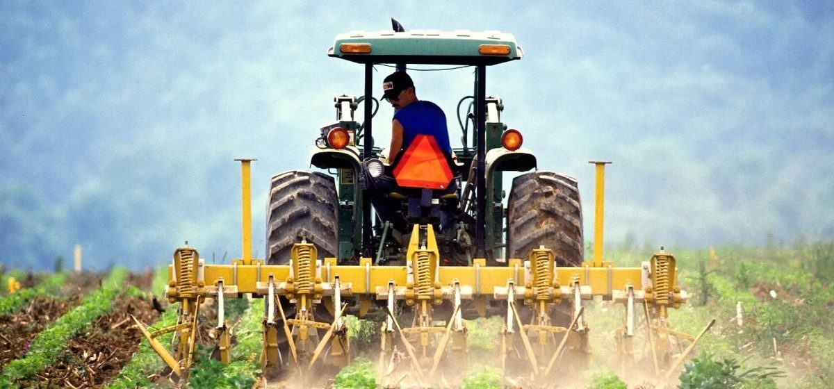 В Беларуси ищут самого экологичного фермера. Приз – 1000 евро