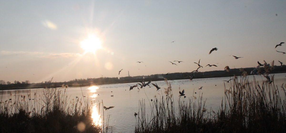 Каким будет первый день весны? Погода в Барановичах