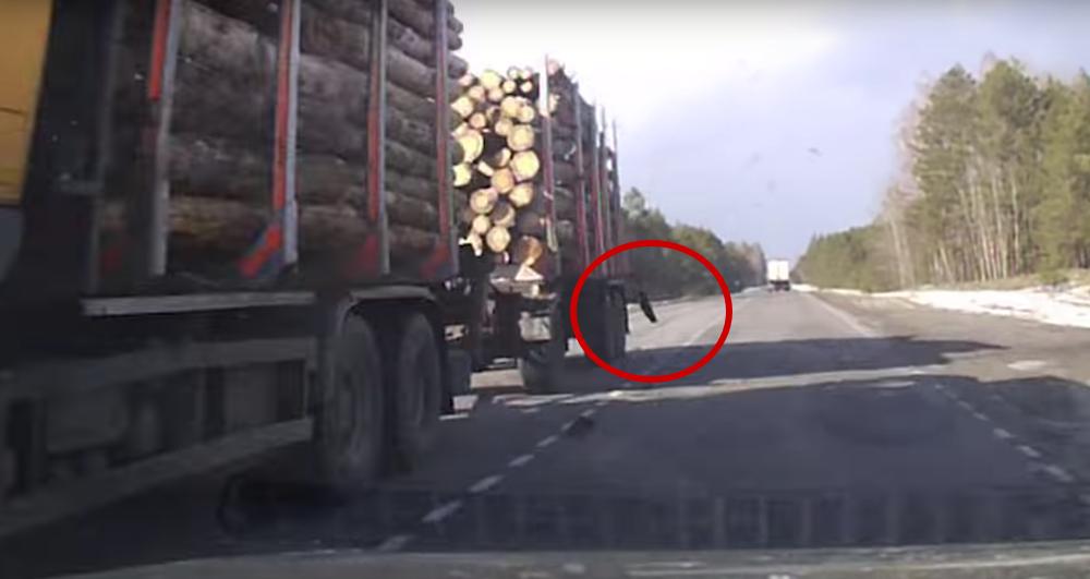 Кусок бревна «прилетел» в легковушку со встречного лесовоза в Гомельской области (видео)