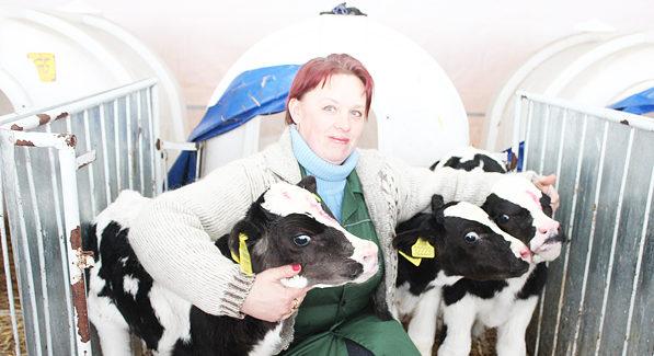 В Пуховичском районе корова родила тройню