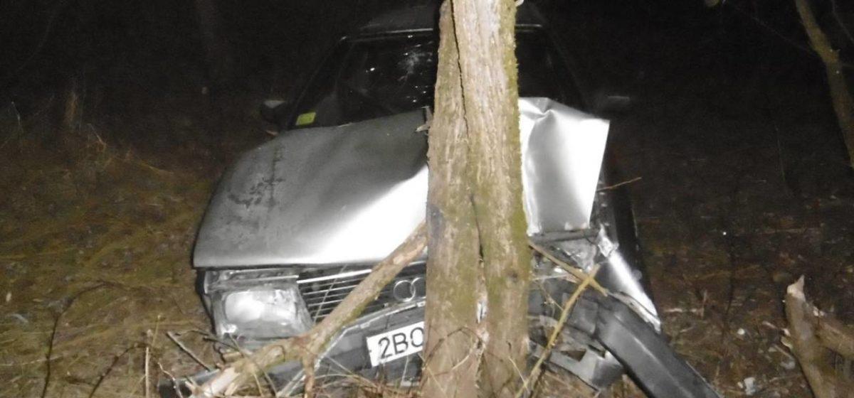 Несовершеннолетняя бесправница сбила знак и чуть не рухнула на Audi в реку. Спасло дерево