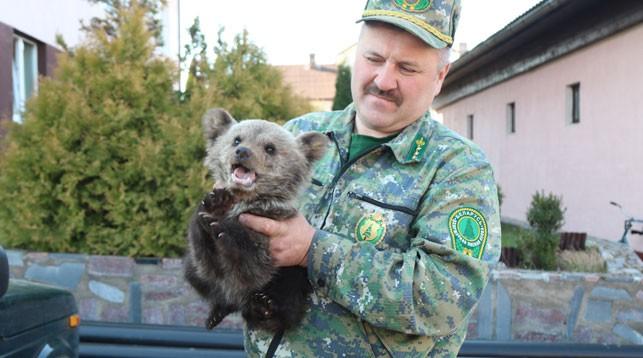 Мужчина спас медвежонка в Логойском районе
