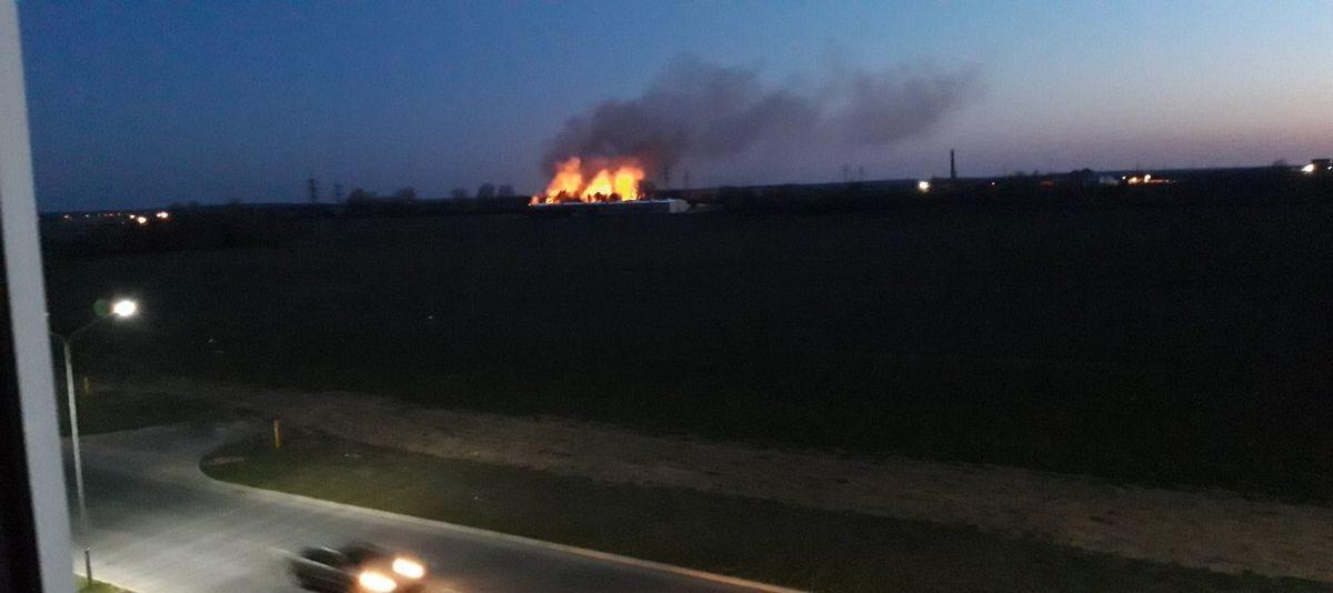 Стена огня. Что снова горело в Боровках?