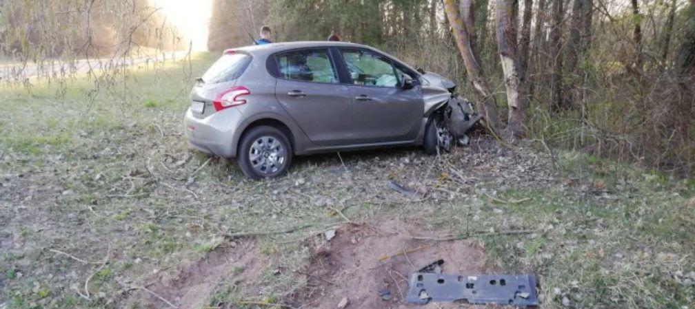 Легковушка вылетела с дороги и врезалась в дерево в Пружанском районе, пострадал ребенок