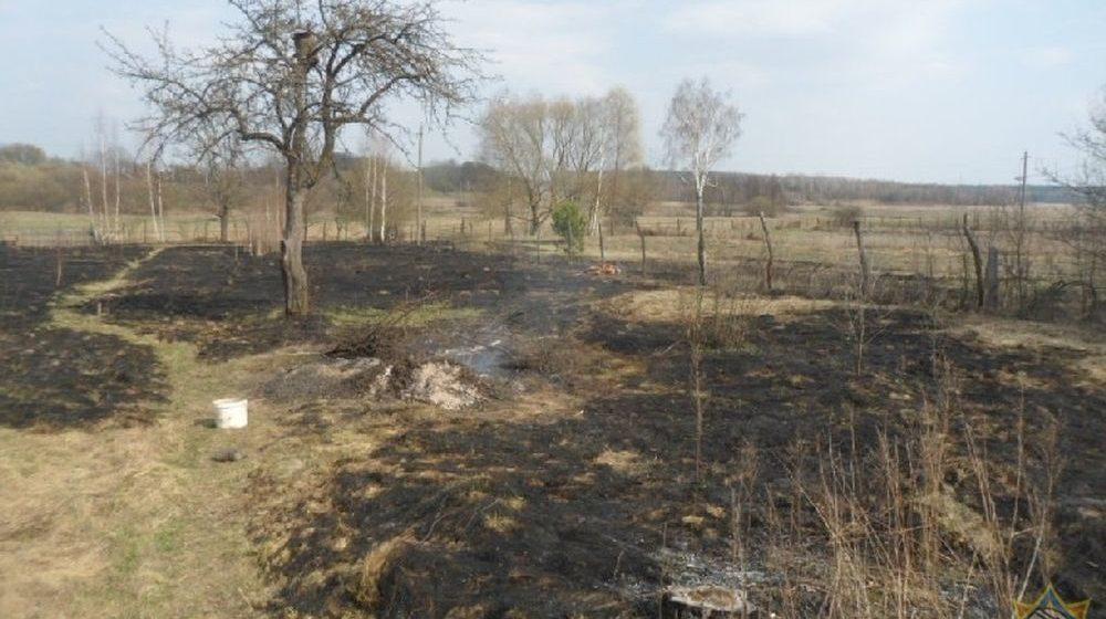 Во время тушения загоревшейся травы в Жлобинском районе погиб пенсионер