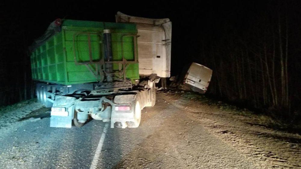 Из-за внезапно выбежавшего на дорогу животного в Сенненском районе столкнулись фура и микроавтобус