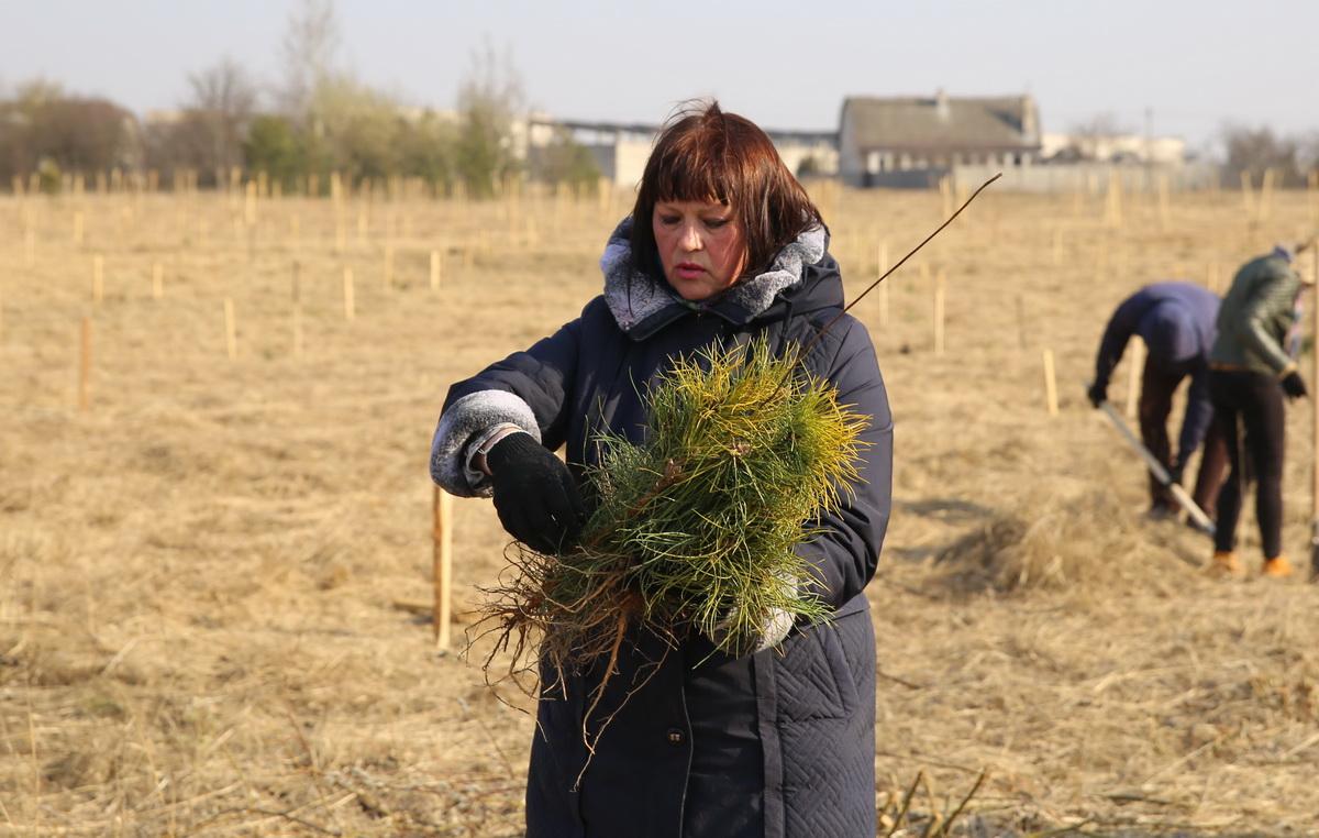 Наталья Тимощик, ландшафтный архитектор службы озеленения городского ЖКХ. Фото: Татьяна МАЛЕЖ