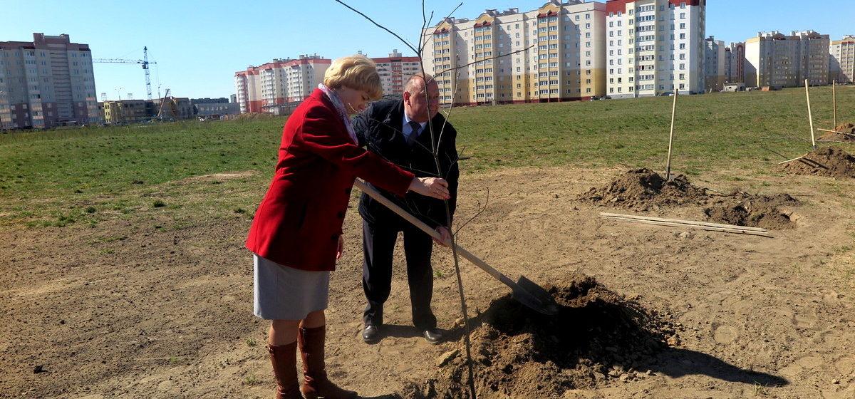 Главное за вчера: Новый квартал многоэтажек в Барановичах, послание Лукашенко белорусскому народу и открытие парка семейных деревьев в нашем городе