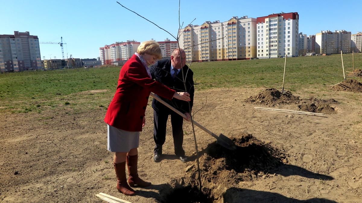 Юрий и Людмила Громаковские высаживают деревья в новом парке. Фото: Елена ЗЕЛЕНКО