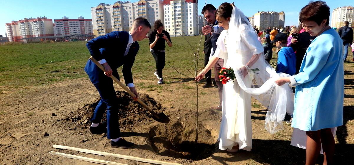 Новый парк открыли в Барановичах. Первые деревья высадили мэр с супругой и молодожены после ЗАГСа