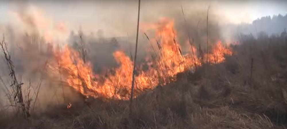 В Речицком районе в горящей траве погиб мужчина