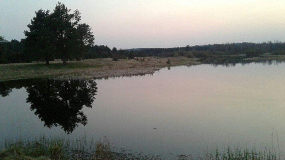 В Бегомле в водоеме утонул 4-летний мальчик