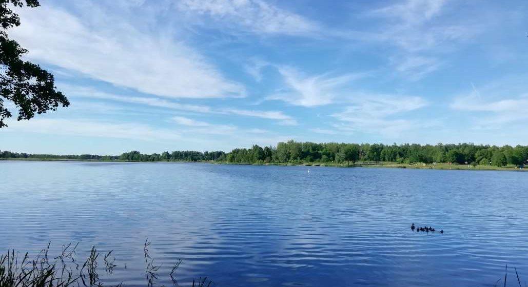 Первый день лета. Какая погода будет в Барановичах 1 июня