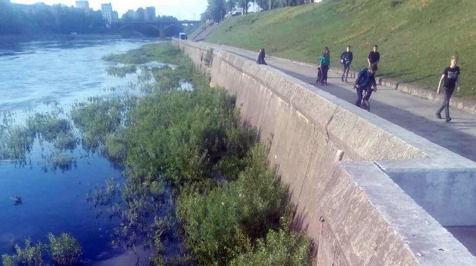 В Витебске ребенок ехал на велосипеде, упал в реку и едва не утонул