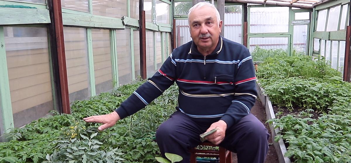 Как вырастить помидоры, перец и баклажаны и какие ошибки допускают дачники. Видео