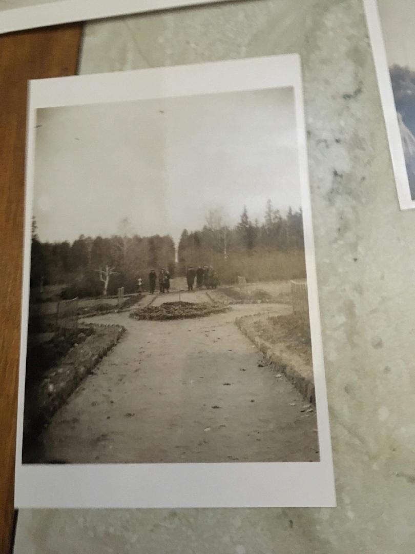 1930-е годы. Усадебный парк.
