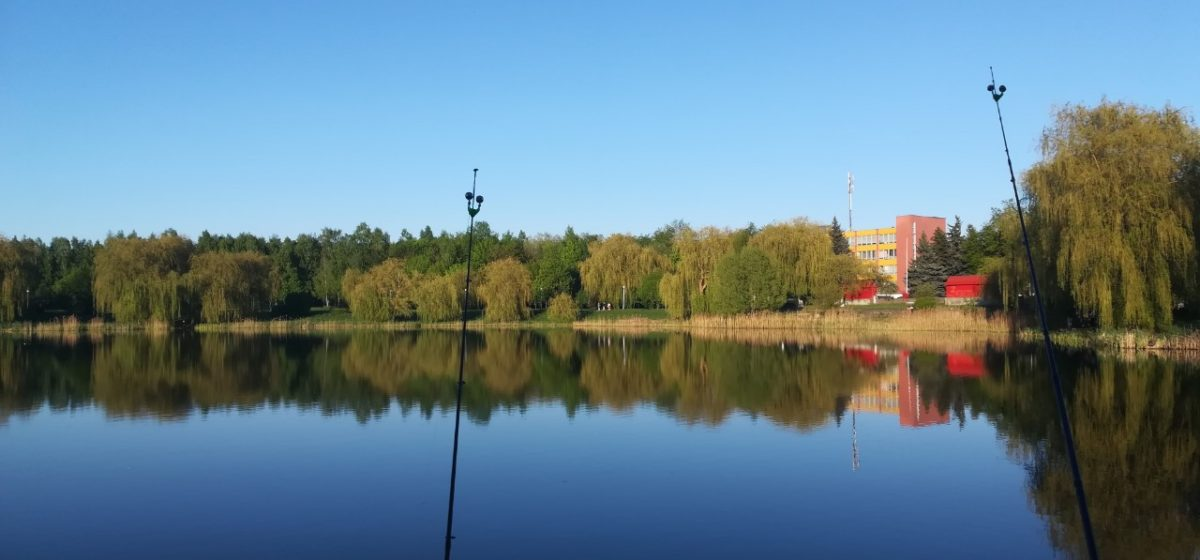 Погода в Барановичах 11 мая: дожди и до +16 °С