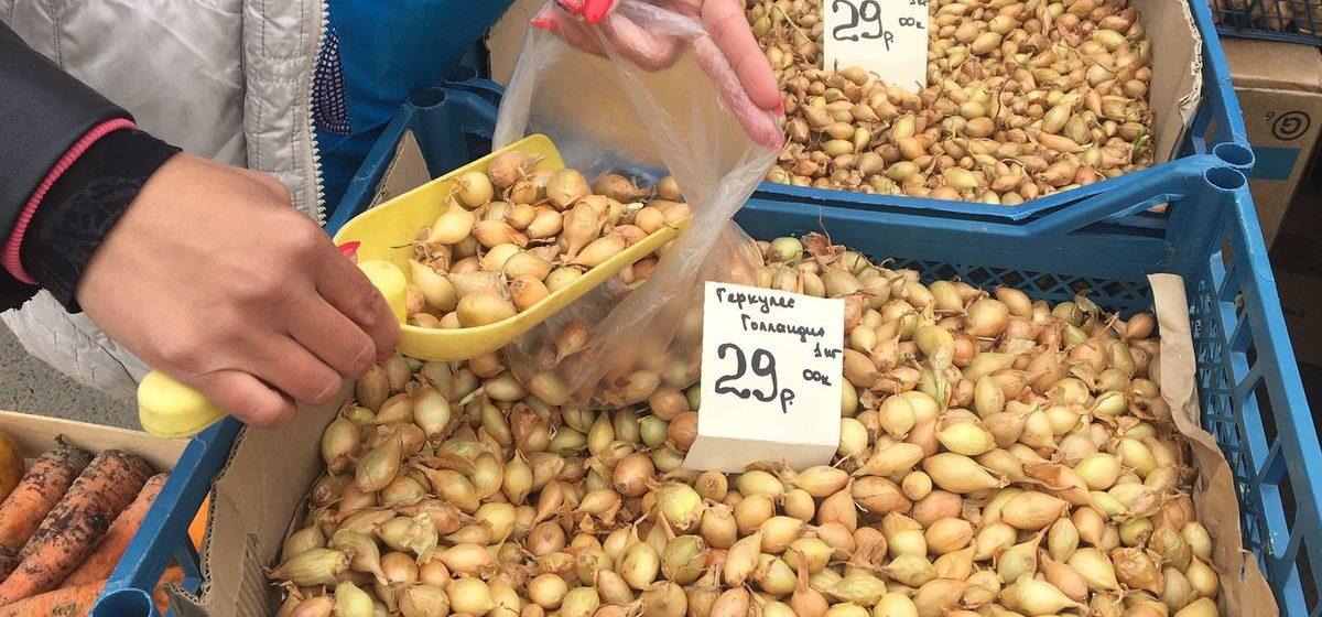 Сравниваем цены. Как за год изменилась стоимость овощей на барановичских рынках