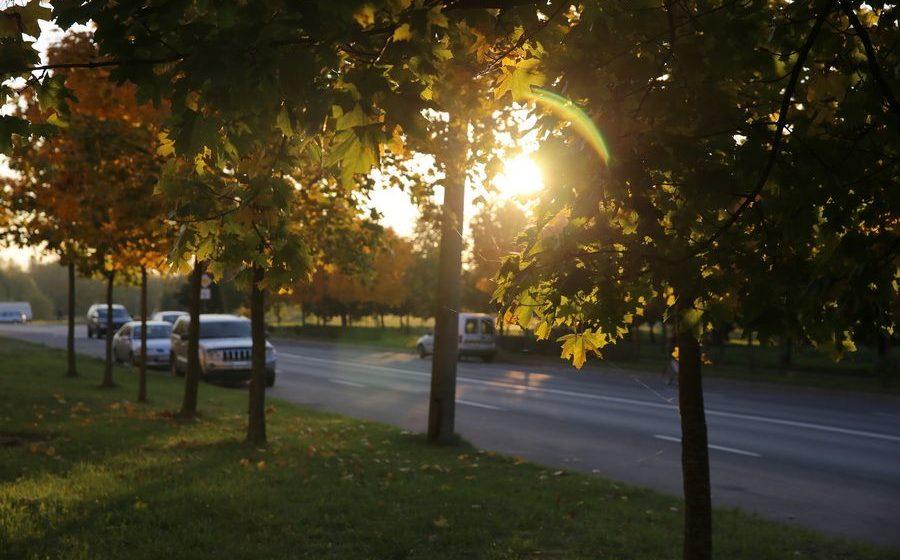 Ждать ли похолодания в ближайшие дни? Прогноз погоды в Барановичах на 15–17 сентября