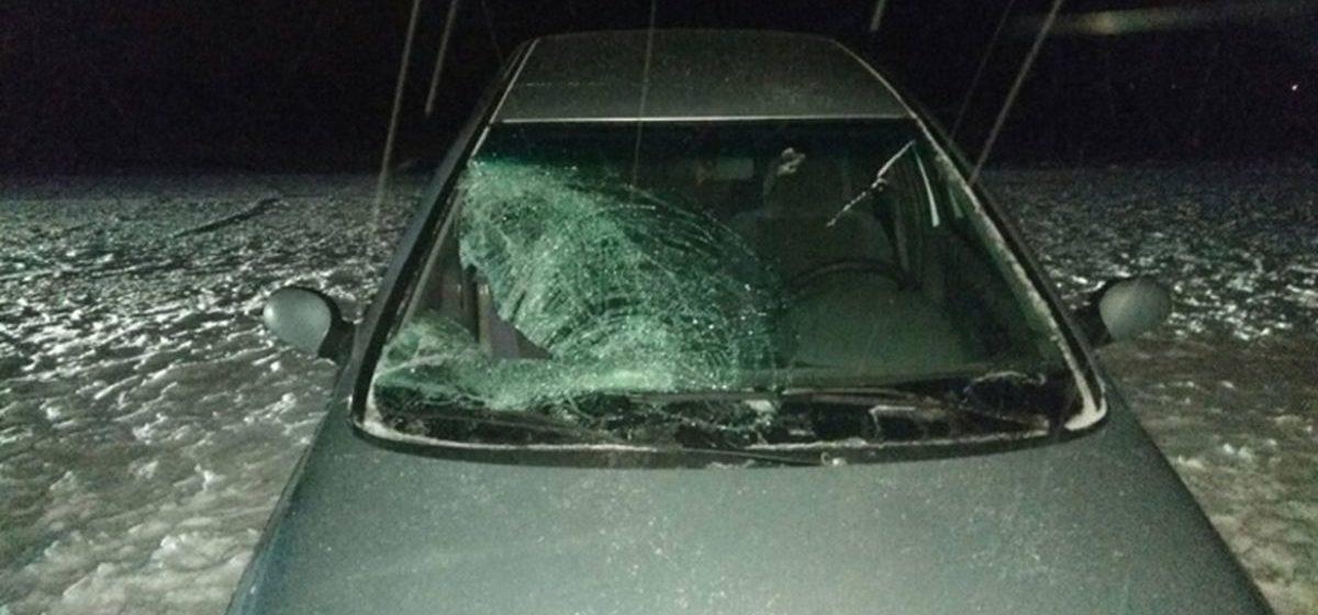 Осудили водителя, который под Барановичами сбил нетрезвого пешехода без фликера