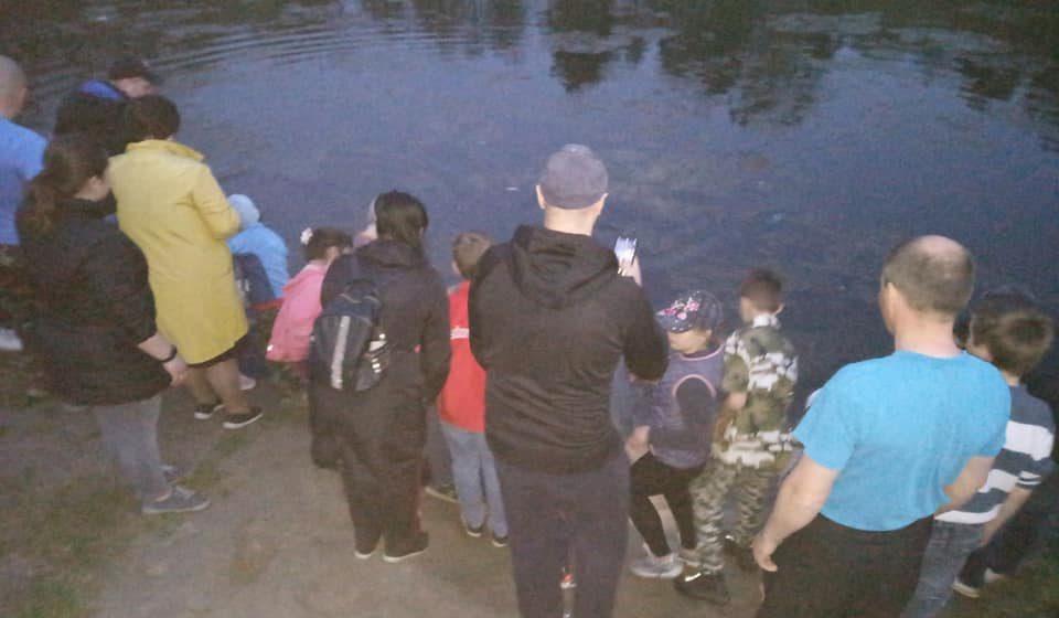В Гомеле люди скинулись и зарыбили местное озеро — а теперь, похоже, все получат штраф