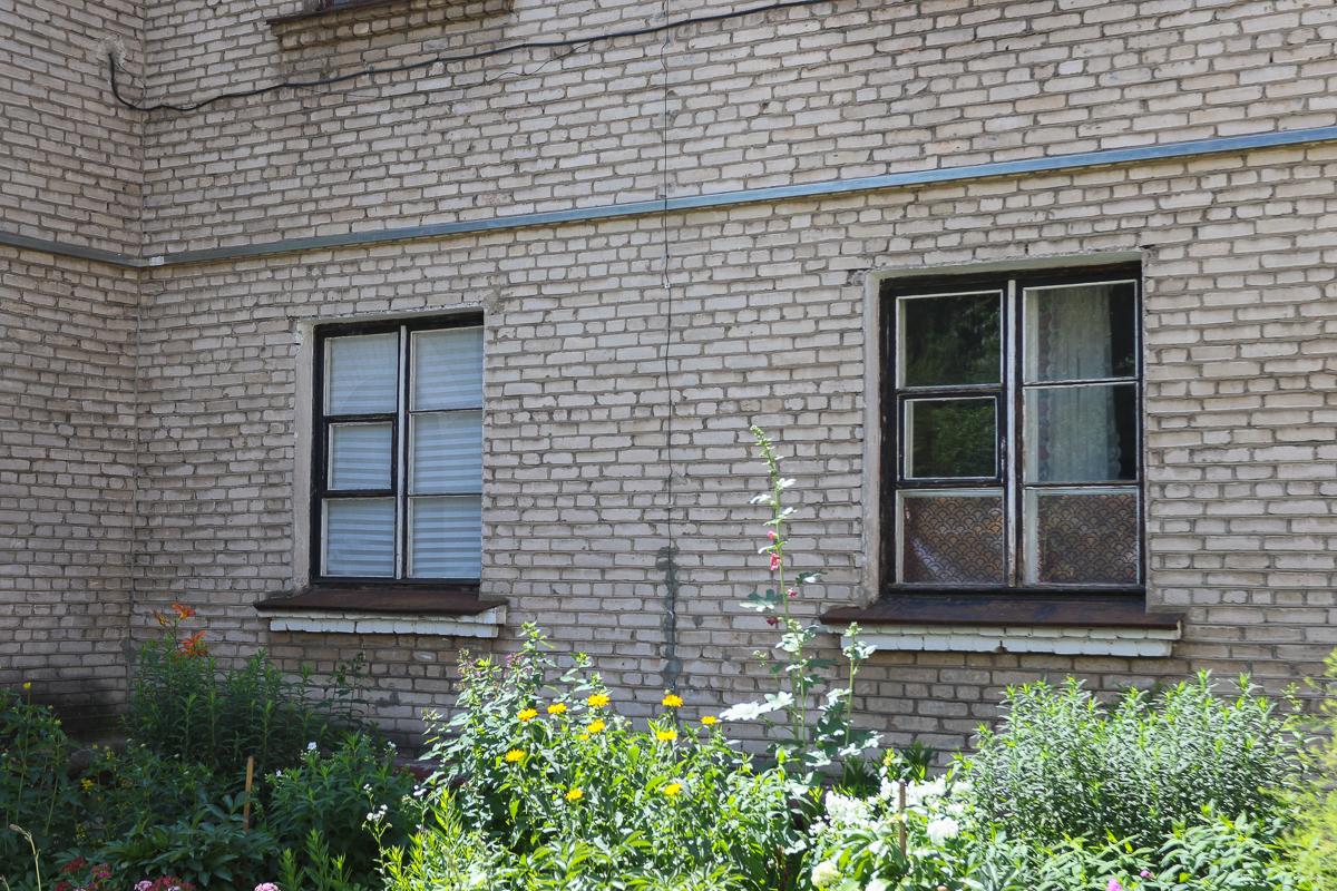 Окна квартиры на первом этаже, которую снимают молодые люди, зашторены, увидеть снаружи, сколько котов в квартире, невозможно.