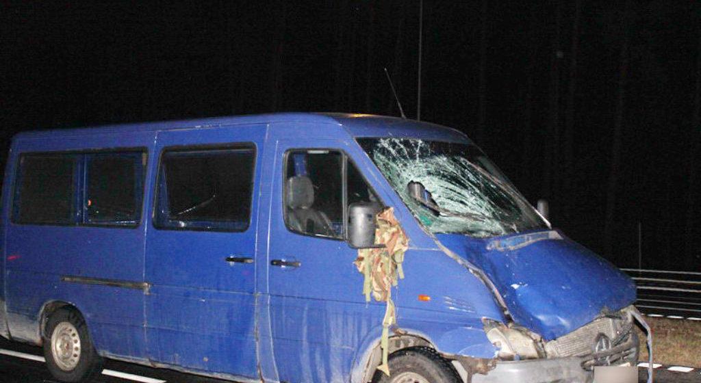 В Жлобинском районе под колесами автомобиля погибли муж и жена. Водитель не заметил их из-за сильного ливня