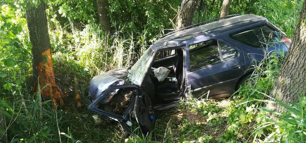 Автомобиль Peugeot врезался в дерево в Дрогичинском районе: пострадали водитель и 13-летняя пассажирка