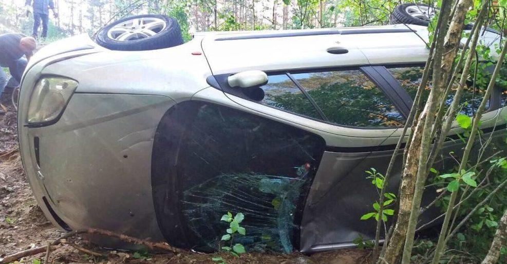 Под Житковичами легковушка врезалась в дерево, погибла 11-летняя девочка