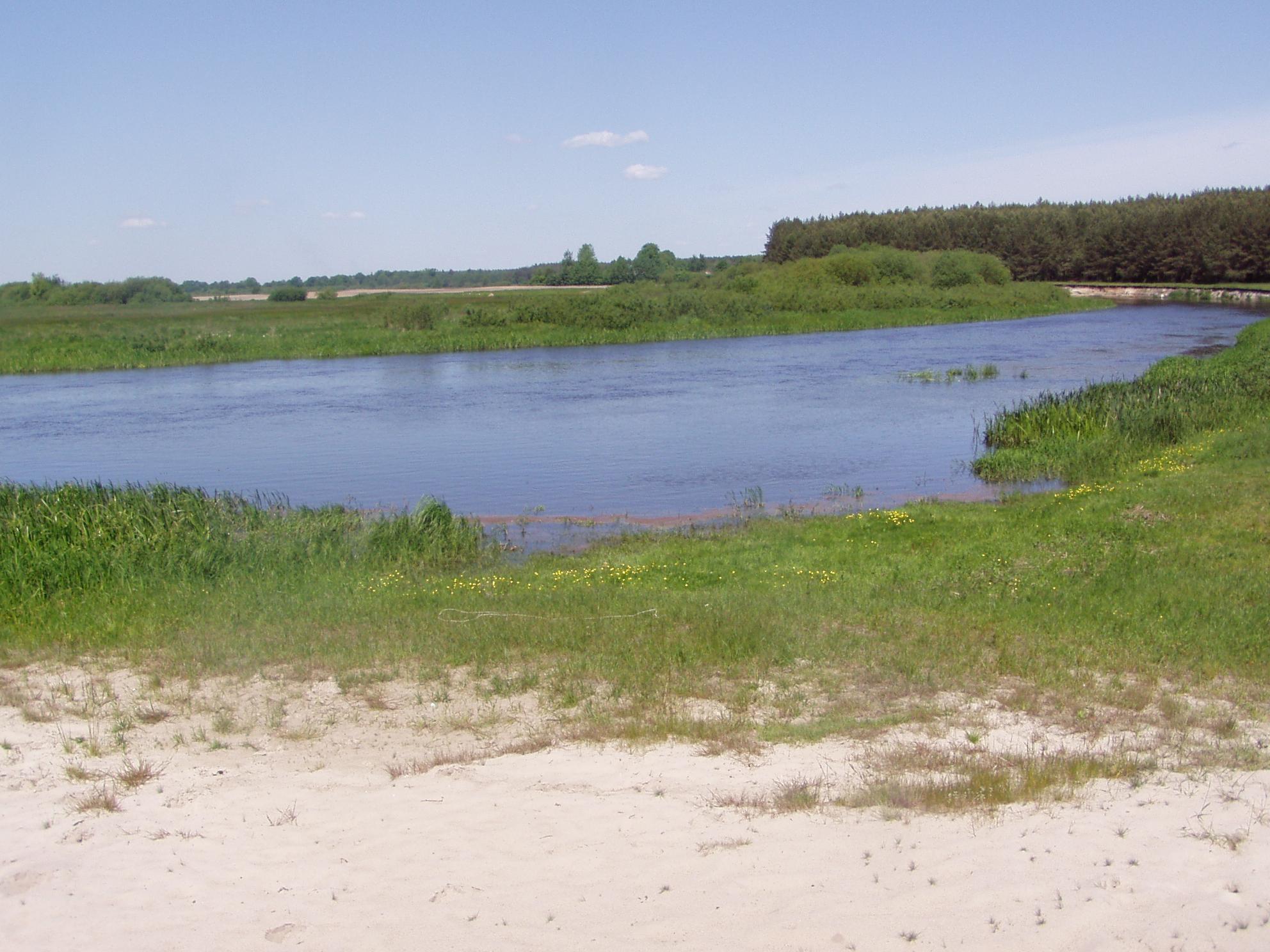 Река Неман. Фото: https://commons.wikimedia.org/