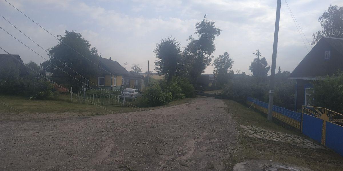 Последствия грозы в деревне Деревная Барановичского района. Фото: Константин Куцевич