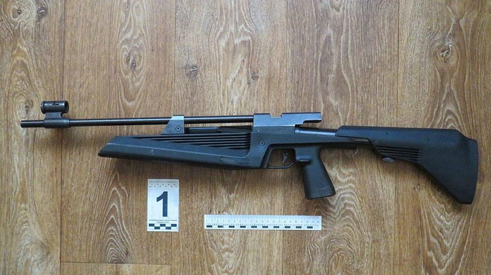 Трехлетняя девочка во время игры выстрелила из пневматической винтовки в голову приятеля-ровесника в Лиде