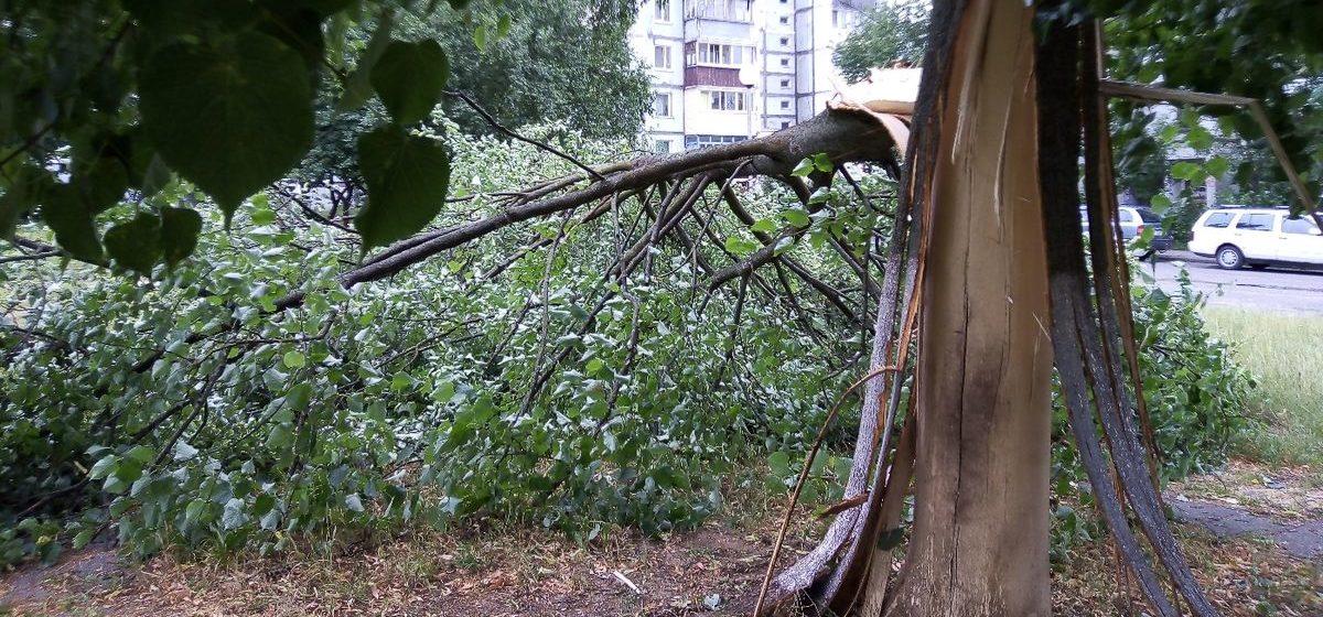 Последствия грозы в Барановичах. Фотофакт