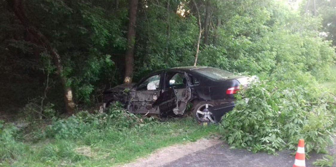Легковушка влетела в дерево под Мозырем, пострадали два человека (фото)
