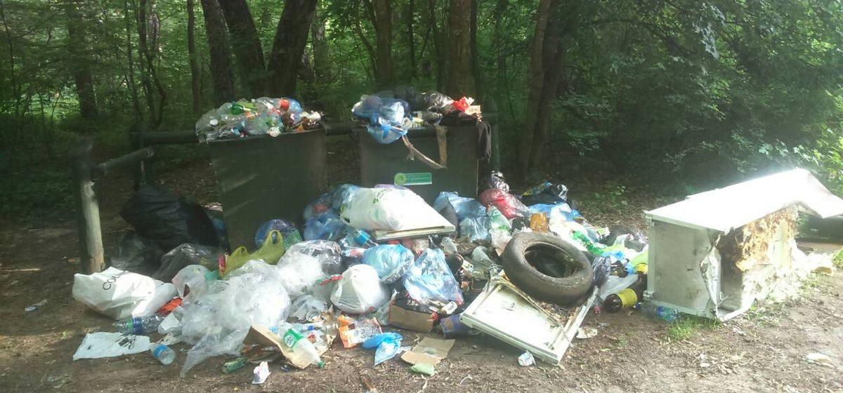 «Выбросили даже холодильник». Гора мусора в урочище «Гай» в Барановичах. Фотофакт