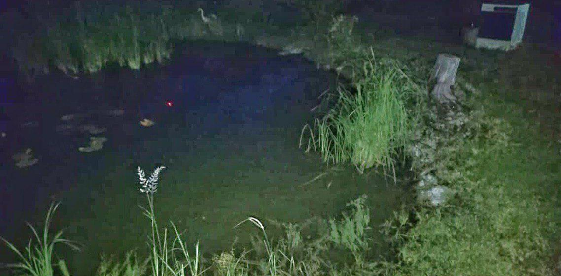 В Речице в домашнем пруду утонул четырехлетний мальчик