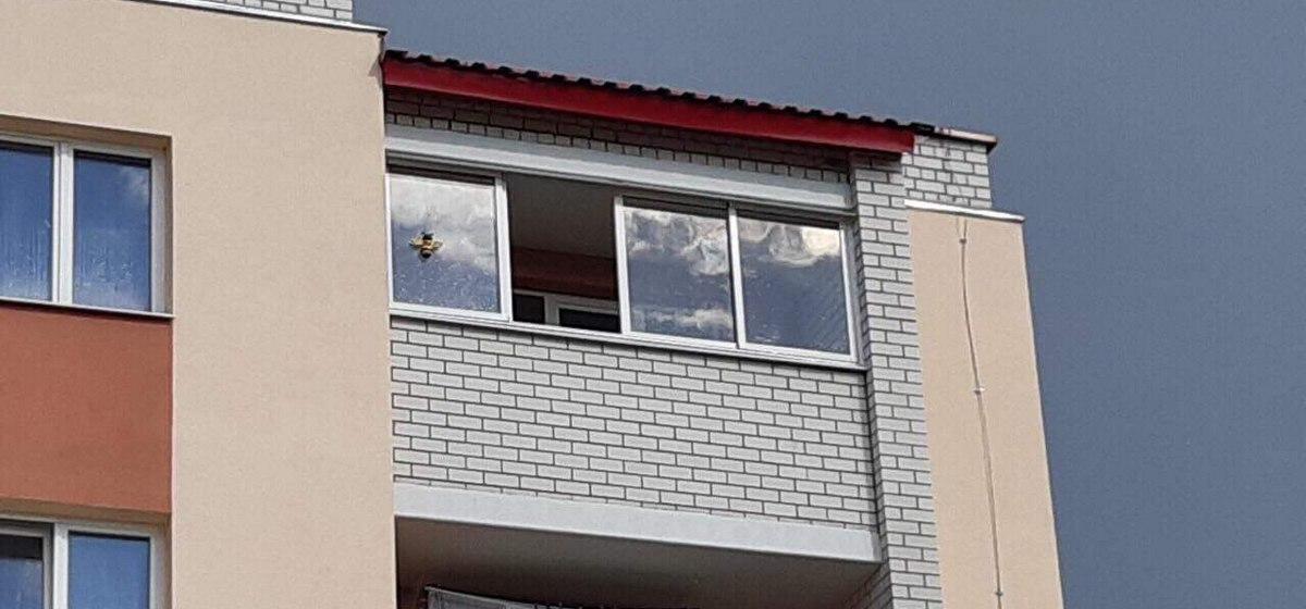 Происшествие в Березе: мужчина приехал к другу на день рождения и выпал с пятого этажа
